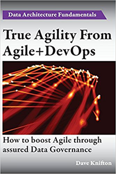 The Data Point - True Agility From Agile and Devops Book